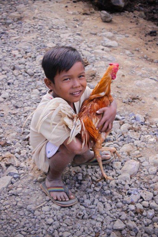 village boy, rooster, Ubud